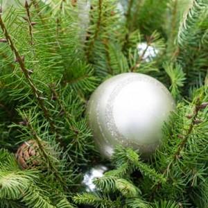 decorating_for_the_holidays_marietta_garden_center